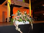 Floral decoration for company events (114)