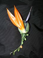 Corsage for the groom (654)