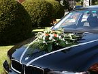 Decoration for the wedding car (615)