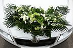 Decoration for the wedding car (605)