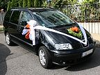 Decoration for the wedding car (686)